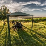 The Pleasant Idea Of Airwave Gazebos